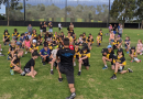 Summer Squad training returns Sunday 6 December